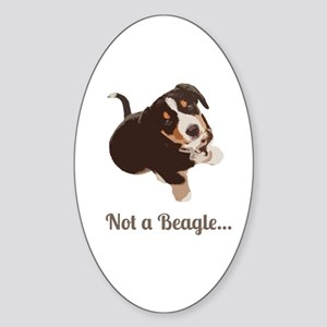Not a Beagle - Entlebucher Mtn Dog Sticker